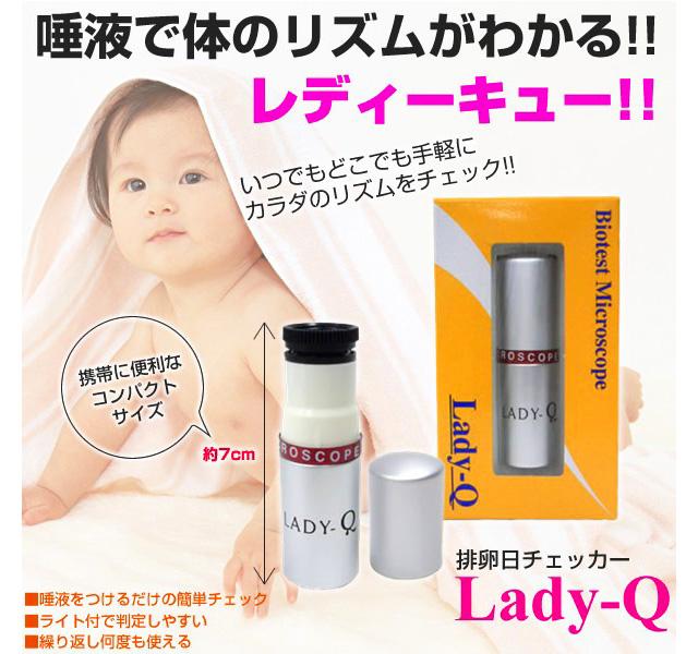 ladyq